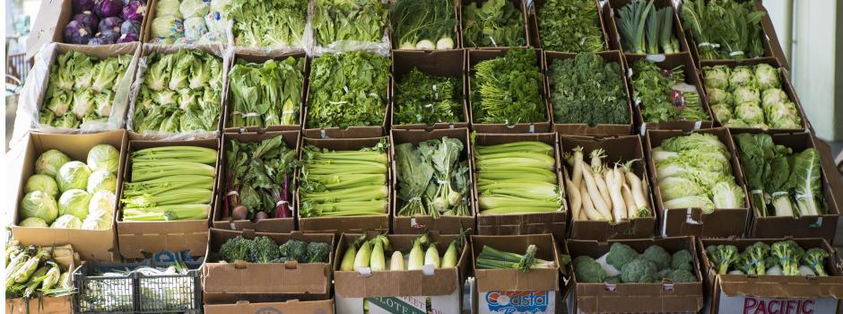Shasta Produce Open Market Display