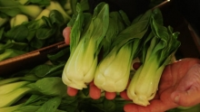 The Market Review - Baby Bok Choy & Comice Pears
