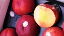The Market Review - White & Yellow Peaches