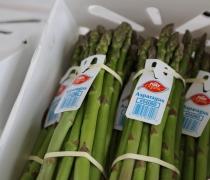 Organic Asparagus