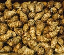 Japanese Potatoes