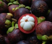 Mangosteen Tropical Fruit