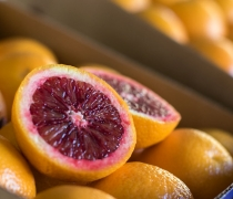 Moro Blood Oranges