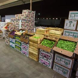 Shasta Produce | Wholesale Produce Company