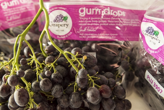 Gum Drops Grapes from the Grapery