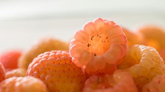 Sunshine Raspberries