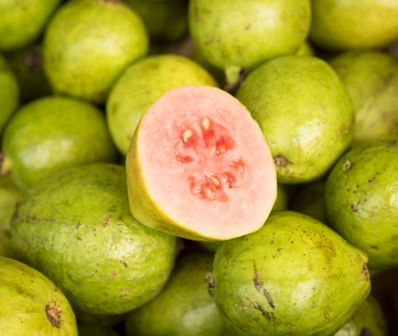 Guava - Red Thai Variety