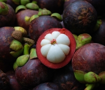 Mangosteen Tropical Fruit