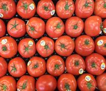 Wholesum Harvest Organic Tomatoes